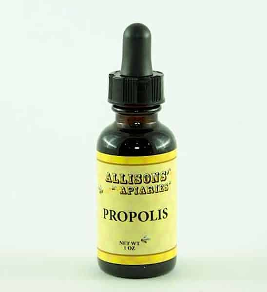 Everything You Should Know About Bee Propolis